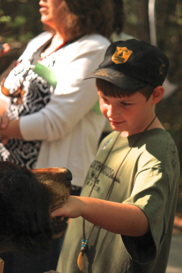 "Nicholas Schlipstein, 9, of Corinth, examines a stuffed black bear at the Maine Wildlife Park in Gray on Sept. 28, ""North Woods Law Day."" Schlipstein visited the park for the first time with his family because he's a big fan of the show."