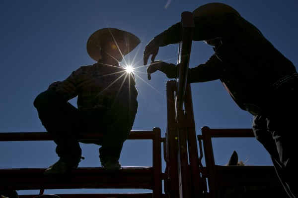 A pair of cowboys chat under clear blue skies during a rodeo at the Cumberland County Fair, Saturday, Sept 28, 2013.