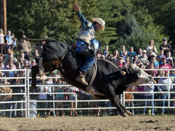 Mark Small of Cumberland, Maine, competes in the bull riding competition at the Cumberland County Fair, Saturday, Sept 28, 2013.