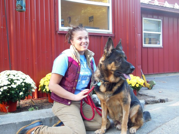 Chisum, a 9-year-old German shepherd pictured here with Coastal Humane Society staffer Allie Athearn, was relinquished in April in Florida after his owners moved. He will be reunited with them Saturday in Virginia thanks to the Coastal Humane Society in Brunswick.