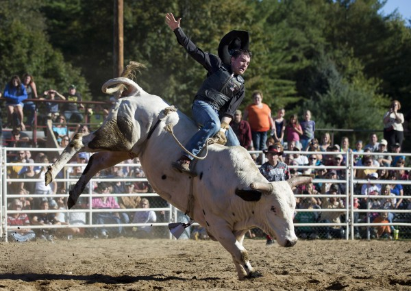 Seventeen-year-old David Harding of Shirley, Maine, loses his hat just before getting thrown off during the bull riding competition at the Cumberland County Fair, Saturday, Sept 28, 2013.