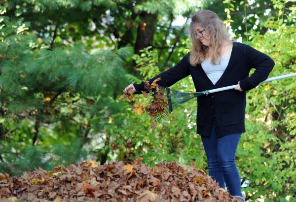 Bella Gatchell rakes leaves at her home in Brewer on Sunday.