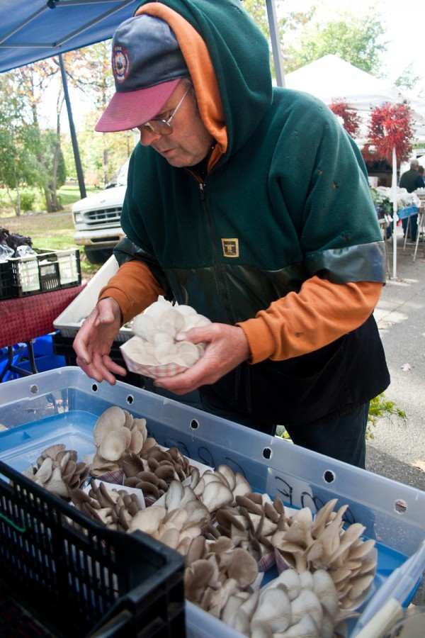 Jodie Jordan, owner of Alewives Brook Farm in Cape Elizabeth, stocks Bountiful Mushrooms Farm's products on Saturday at the Portland Farmer Market in Deering Oaks Park. At the height of summer, Jordan was selling about 40 pounds a week, he said.