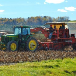 Aroostook farmers welcoming the weather