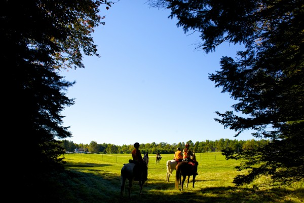 Maine Mounted Search and Rescue certified horses and riders walk out of the woods after demonstrating how they use horses to help locate lost, abducted, or missing persons in the state of Maine while utilizing the many benefits that riding horseback can bring to searches.