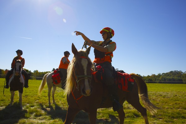 Sharon Kenney Pomeroy leads two other certified search and rescue horses into the woods to show some of the training and techniques that MMSAR uses to help locate lost, abducted, or missing persons in the state of Maine during a MMSAR benefit ride Sept. 28.