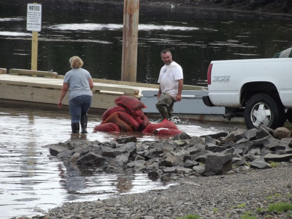 In a photo taken this past summer at the public boat landing in Moosehorn National Wildlife Refuge in Edmunds, Grady Look and Cindy Lyons of Machias wash bags of seaweed they have collected by immersing the bags in the water and stepping on them repeatedly.