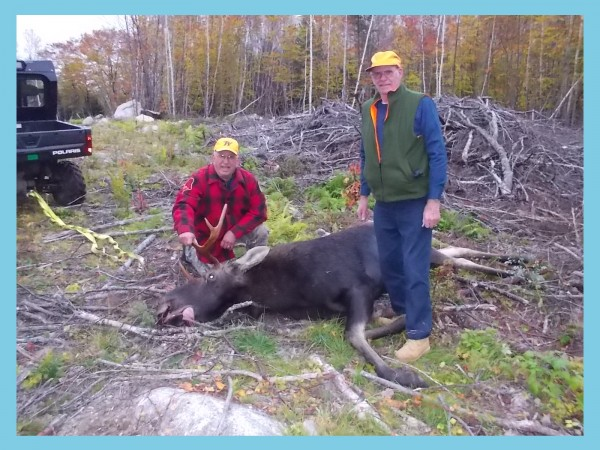 Peter Lucas of Lincoln (left) poses with his moose and with hunting buddy William Merritt.