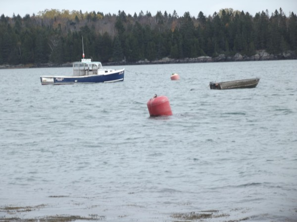 A boat and skiff are tethered to moorings in the water near the Edmunds boat launch on Wednesday.