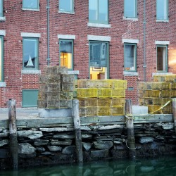 Sea level rise a concern for Portland architects