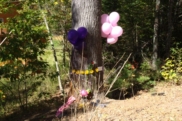 A memorial to Taylor Darveau was created next to the tree where the car accident occurred on Oct. 3.