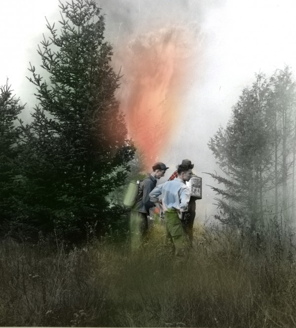 This scene is in the woods in the Norway Drive section of Mount Desert Island and shows men armed with Indian tanks trying to cut off the raging flames. Note high dry grass and a fir tree bursting into flames in the background.