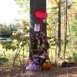 Bucksport police identify high school student killed in car crash