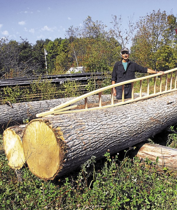 Peter Baldwin poses with one of his pointed orchard ladders, which is designed to fit into narrow spaces between branches. The ladder's wider base also offers increased stability. Baldwin stands here with some hefty logs of big-toothed aspen, which he mills on site and dips in a preservative to make his ladders.
