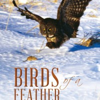 """Paul Fournier's """"Birds of a Feather"""" takes flight"""