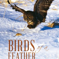 "Paul Fournier's ""Birds of a Feather"" takes flight"