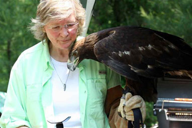 Hope Douglas of Wind Over Wings with Chrysos, a Golden Eagle