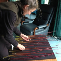 2013 artist Elizabeth Billings weaves dogwood stems.