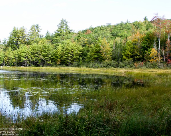 Hothole Pond