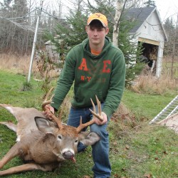 Biologist says Maine deer herd rebounding nicely