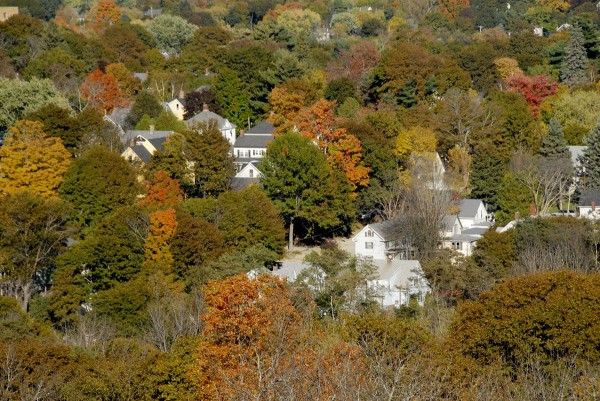Splotches of color appear amidst the shade trees growing along the Little City streets in Bangor's East Side. The scene was visible from the Thomas Hill Standpipe during its Oct. 9 open house.