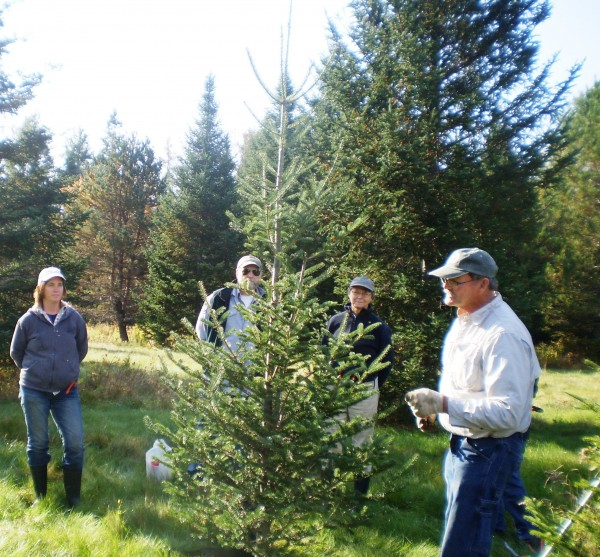 Pictured from left to right: Stephanie Panciera, Gordon Moore, Piscataquis County Soil and Water Conservation District Chairman, Cynthia Hall and Toby Hall, owners of Hall's Christmas Tree Farm in Sangerville.
