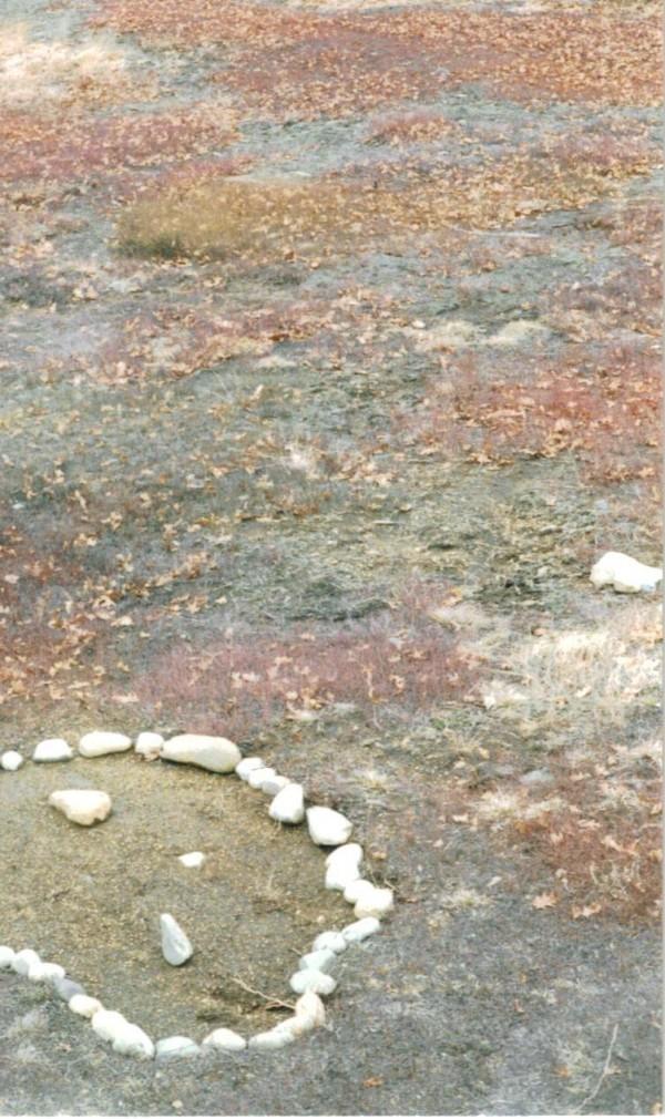 Union's Paleo-Indian Site