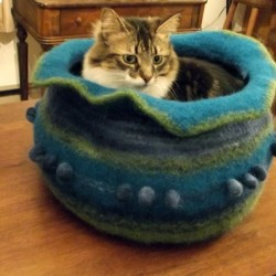 A cat bed/kitty kave created by k.c.e. knits of Boothbay is one of the items in the silent and live auction benefitting A Paw in the Door.