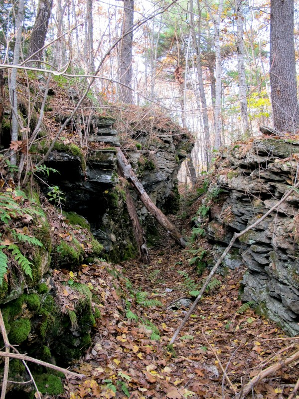 Moss covers one of the of several historical, man-made quarries on a 29-acre parcel in Topsham recently acquired by the Brunswick-Topsham Land Trust on the Cathance River.