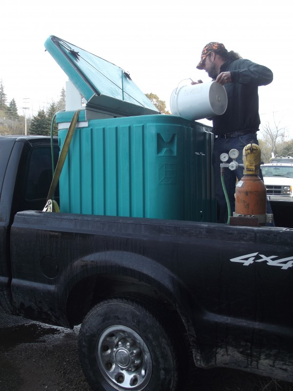 Hatchery manager Jacob van de Sande pours a bucket of salmon parr into a tank aboard a pickup truck that will transport the parr to the place where they will be stocked into the East Machias River watershed.