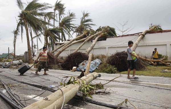 Survivors walks past uprooted palm trees Saturday after Typhoon Haiyan battered Tacloban city in the central Philippines on Friday.