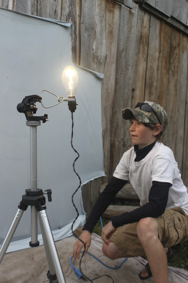 Fyn Kynd, 12, of Searsmont, hooks up a light in front of a backdrop to attract moths overnight at his family's small farm, Kynd View Farm. For the past two years, he has been photographing and identifying moths at his home. Many of the photos he posts on projectnoah.org, a citizen scientist website.