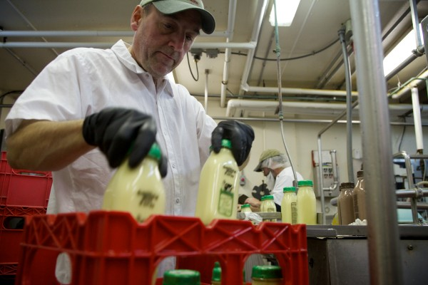 Dana Bowman grabs bottles of Smiling Hill Farm's eggnog as they roll of the line at their small bottling facility in Westbrook.