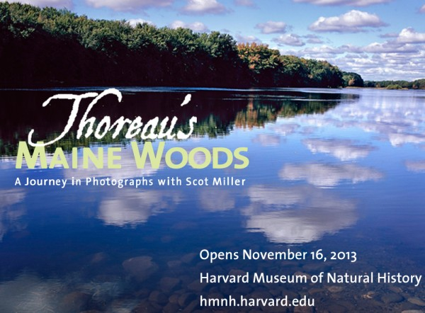 Come see Scot Miller's beautiful photos about the land Thoreau wrote about!