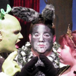 Shrek, Donkey and Fiona