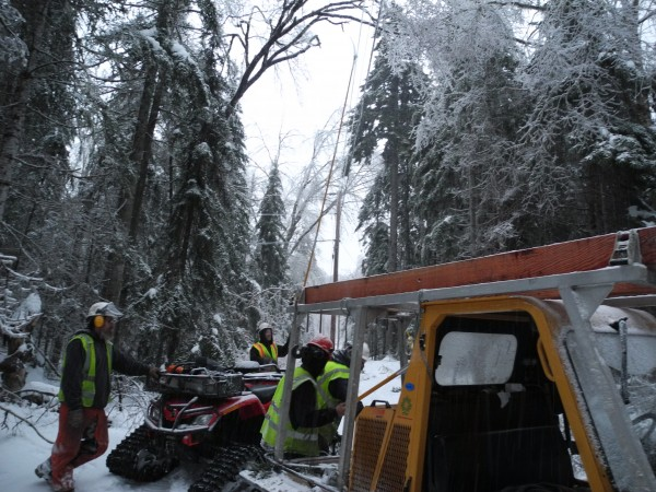 A crew from Asplundh works to clear fallen trees from power lines Thursday evening in a hard-to-access area.