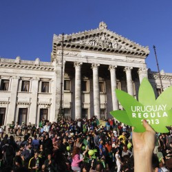 Uruguay's strategy for breaking into the pot-dealing business