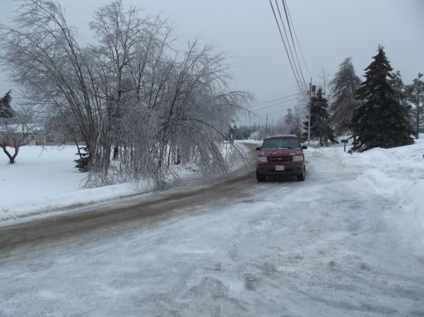 A motorist driving on a street in a Machias neighborhood Monday veers into the opposite lane to avoid trees weighed down with ice and hanging into the road.