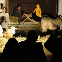 LIVING NATIVITY IN ORRINGTON People watc the living Nativity at Orrington Center Church on Sunday evening. About 20 parishioners participated in the Nativity, which had live animals such as a sheep, goat, duck and donkey. This is the first year the church organized the living Nativity, but it hopes to make it a tradition. About 60 people came to the first of two viewings. (BANGOR DAILY NEWS FILE PHOTO BY GABOR DEGRE)