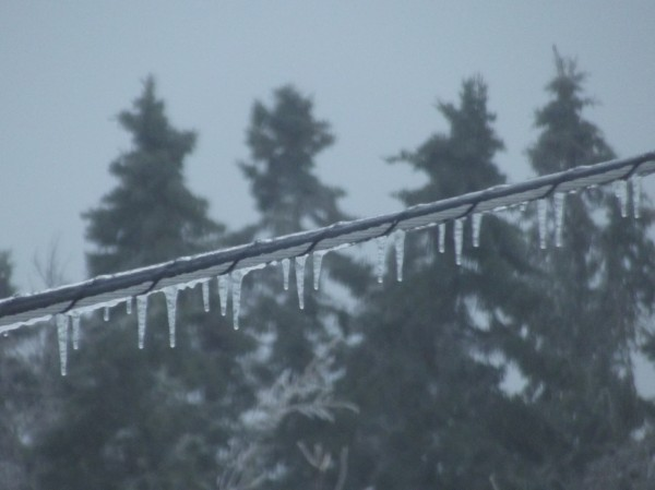 Tiny icicles dangle from power line in a Machias neighborhood Sunday morning.