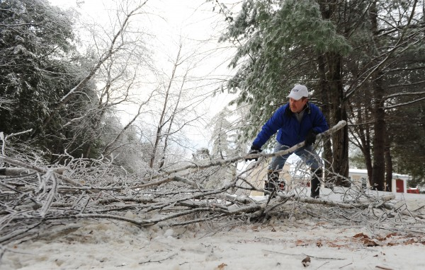 Ohio Street resident Gerry Murray cleans up a birch tree he cut down after it bent over his driveway in Glenburn the previous night during the ice storm. &quotThat's why I have no phone,&quot said Murray after spotting his phone line on the ground.