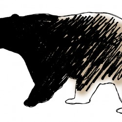 Tuesday, June 24, 2014: Bear hounding, quilting, national park support