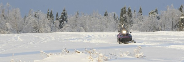 A snowmobiler races through a field surrounded by ice covered trees along  Branch Pond Road in Ellsworth on Saturday.