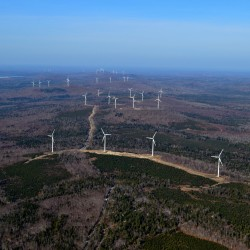Wind turbines, wildlife can coexist in Maine, report says