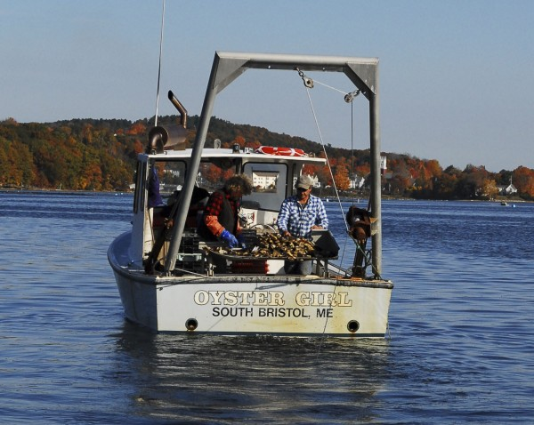 Jeff &quotSmokey&quot McKeen (left) and Carter Newell, partners in Pemaquid Oyster, unload oysters they've harvested using a small dragger on the Oyster Girl.