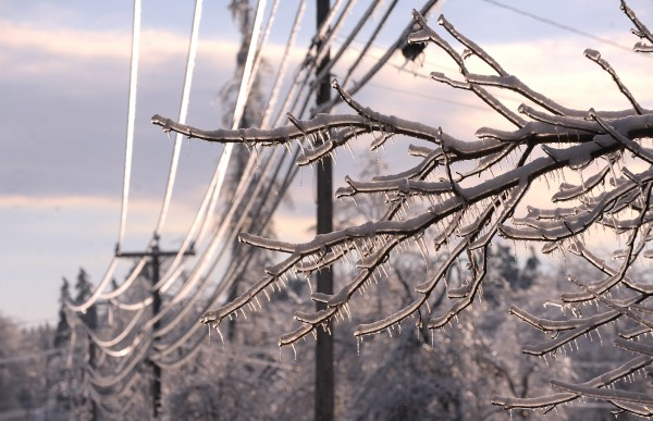 A thick layer of ice coated branches and power lines, continuing to cause power outages in the Ellsworth area Friday.
