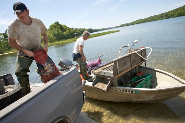 Mike Brown (left) and Gary Crouse load quahogs into a truck from their boat on Upper New Meadows Lake in June 2011.