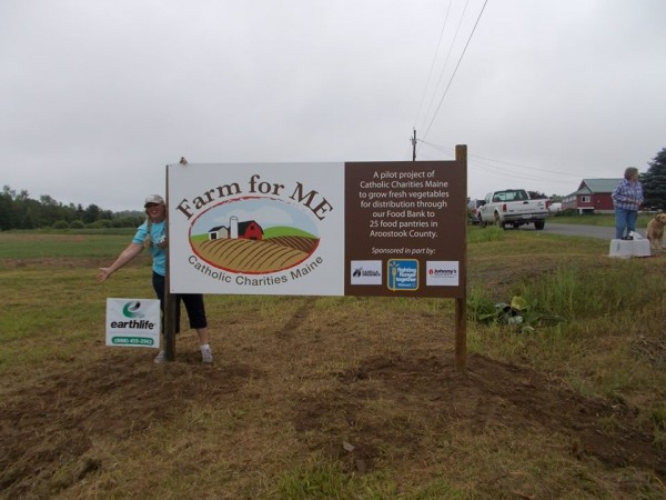 Dixie Shaw, Catholic Charities program director, celebrates last spring the launch of the Farm for ME program in Aroostook County. Jim and Martie Pritchard have invited Catholic Charities to grow organic vegetables on their farm in Chapman to help supply the food banks that feed the County's needy.