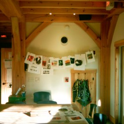 Sweet Tree Arts interior