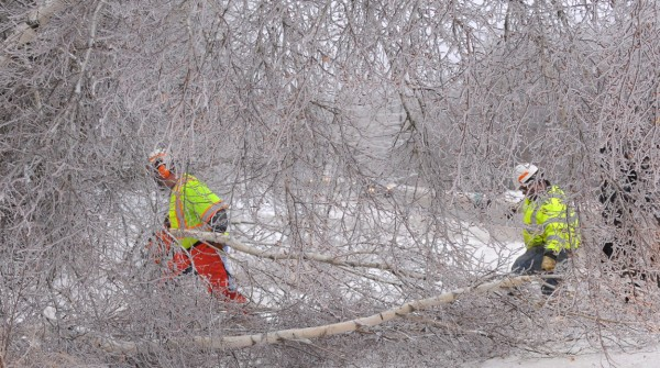 Maine DOT workers James Johnson Sr. (left) and Richard W. Doucet work on clearing trees from the roadway along Route 178 in Eddington Monday afternoon.  The trees were so heavily crusted over with ice that they were leaning over the road and had to be cut down. They said that the weekend was very busy for the DOT crews in the area.